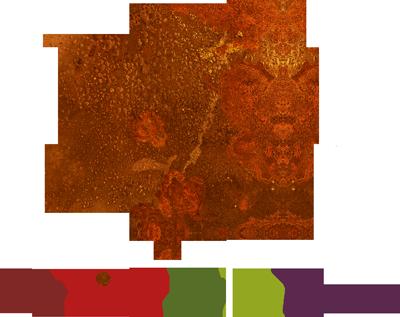 Les vins de la terre